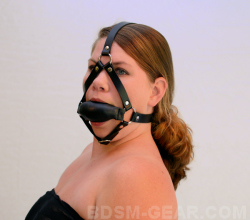 Soft Gag with Harness