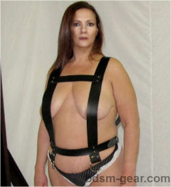 Inverted  Suspension Harness