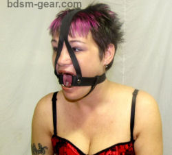 Steel Ring Gag with Harness