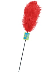 whip smart feather tickler